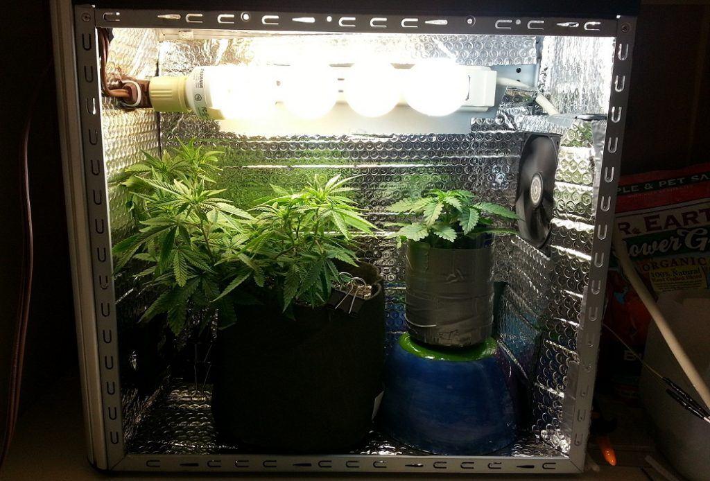 Impianti base coltivazione indoor